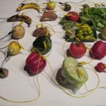 Fresh Music for Rotten Vegetables — Festival der Regionen