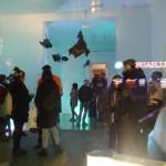 Coelacanth @  Kleiner Salon Berlin